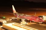 tmkさんが、新石垣空港で撮影した日本トランスオーシャン航空 737-8Q3の航空フォト(飛行機 写真・画像)
