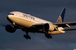 グリスさんが、成田国際空港で撮影したユナイテッド航空 777-222/ERの航空フォト(飛行機 写真・画像)