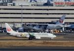 Espace77さんが、羽田空港で撮影した日本航空 737-846の航空フォト(飛行機 写真・画像)