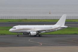 たまさんが、羽田空港で撮影したコムラックス・マルタ A319-115X CJの航空フォト(飛行機 写真・画像)