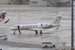 たまさんが、羽田空港で撮影したアルジェリア政府 G-IV Gulfstream IVの航空フォト(飛行機 写真・画像)