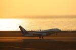 さんたまるたさんが、中部国際空港で撮影した全日空 737-781の航空フォト(飛行機 写真・画像)