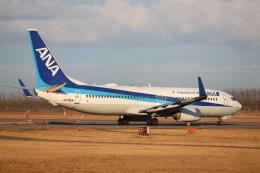 いぶちゃんさんが、新潟空港で撮影した全日空 737-881の航空フォト(飛行機 写真・画像)