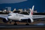 HNDマンさんが、伊丹空港で撮影した日本航空 787-8 Dreamlinerの航空フォト(飛行機 写真・画像)