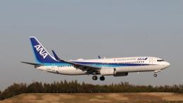 raichanさんが、成田国際空港で撮影した全日空 737-881の航空フォト(飛行機 写真・画像)