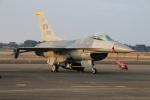 ショウさんが、新田原基地で撮影したアメリカ空軍 F-16CM-50-CF Fighting Falconの航空フォト(飛行機 写真・画像)
