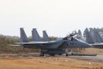 ショウさんが、新田原基地で撮影した航空自衛隊 F-15DJ Eagleの航空フォト(飛行機 写真・画像)