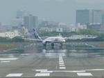 うすさんが、伊丹空港で撮影した全日空 787-8 Dreamlinerの航空フォト(写真)