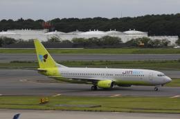 hiroki-JA8674さんが、成田国際空港で撮影したジンエアー 737-86Nの航空フォト(飛行機 写真・画像)