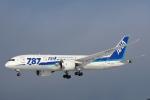 syo12さんが、函館空港で撮影した全日空 787-8 Dreamlinerの航空フォト(飛行機 写真・画像)
