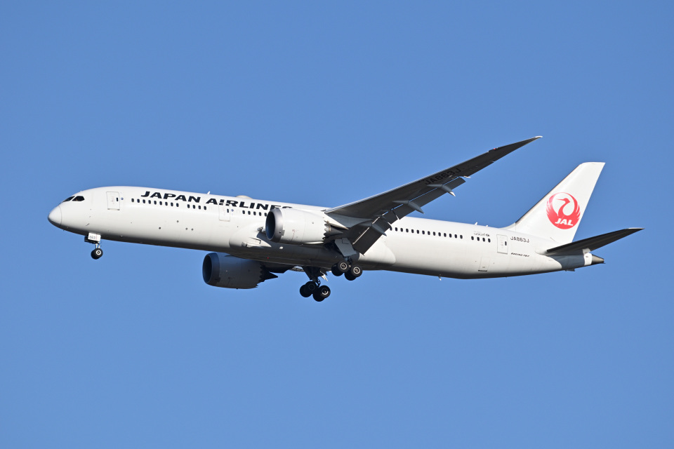 183keihozonkaiさんの日本航空 Boeing 787-9 (JA863J) 航空フォト