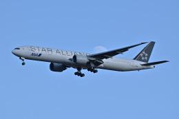 183keihozonkaiさんが、成田国際空港で撮影した全日空 777-381/ERの航空フォト(飛行機 写真・画像)