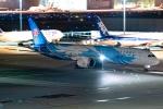 Ariesさんが、羽田空港で撮影した中国南方航空 787-9の航空フォト(飛行機 写真・画像)