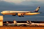 まえちんさんが、成田国際空港で撮影した全日空 777-381/ERの航空フォト(飛行機 写真・画像)