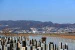 ひめままさんが、伊丹空港で撮影した日本航空 767-346/ERの航空フォト(飛行機 写真・画像)