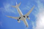 ちゃぽんさんが、伊丹空港で撮影した日本航空 787-8 Dreamlinerの航空フォト(飛行機 写真・画像)