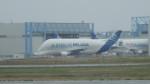 るかりおさんが、トゥールーズ・ブラニャック空港で撮影したエアバス・トランスポート・インターナショナル A300B4-608STの航空フォト(飛行機 写真・画像)