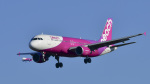 パンダさんが、成田国際空港で撮影したピーチ A320-214の航空フォト(飛行機 写真・画像)