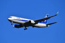 航空フォト:JA620A 全日空 767-300
