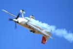 K.Tさんが、岐阜基地で撮影したパスファインダー EA-300SCの航空フォト(飛行機 写真・画像)