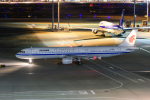 kuraykiさんが、羽田空港で撮影した中国国際航空 A321-213の航空フォト(飛行機 写真・画像)