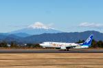 pcmediaさんが、静岡空港で撮影した全日空 737-881の航空フォト(飛行機 写真・画像)