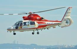 ブルーさんさんが、横浜ヘリポートで撮影した横浜市消防航空隊 AS365N2 Dauphin 2の航空フォト(飛行機 写真・画像)