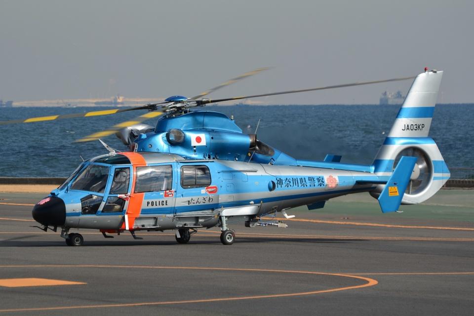 ブルーさんさんの神奈川県警察 Eurocopter AS365/565 Dauphin 2/Panther (JA03KP) 航空フォト