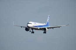 OZISANさんが、高松空港で撮影した全日空 A321-211の航空フォト(飛行機 写真・画像)
