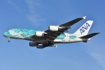 islandsさんが、成田国際空港で撮影した全日空 A380-841の航空フォト(飛行機 写真・画像)
