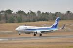 KKiSMさんが、鳥取空港で撮影した全日空 737-881の航空フォト(飛行機 写真・画像)