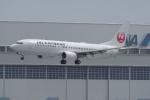 TG36Aさんが、羽田空港で撮影したJALエクスプレス 737-846の航空フォト(飛行機 写真・画像)
