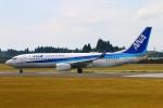 Kuuさんが、鹿児島空港で撮影した全日空 737-8ALの航空フォト(飛行機 写真・画像)