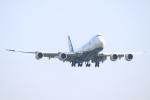 エアさんが、成田国際空港で撮影した日本貨物航空 747-8KZF/SCDの航空フォト(飛行機 写真・画像)