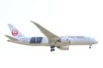 AIR兄ぃさんが、成田国際空港で撮影した日本航空 787-8 Dreamlinerの航空フォト(飛行機 写真・画像)
