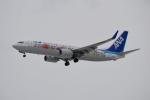 E-75さんが、函館空港で撮影した全日空 737-881の航空フォト(飛行機 写真・画像)