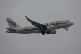 sky-spotterさんが、北京首都国際空港で撮影したチベット航空 A319-115の航空フォト(飛行機 写真・画像)