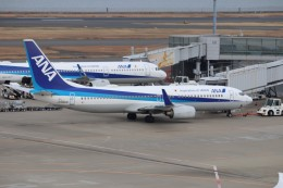 flyflygoさんが、羽田空港で撮影した全日空 737-881の航空フォト(飛行機 写真・画像)