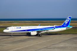 ひよっこさんが、山口宇部空港で撮影した全日空 A321-211の航空フォト(飛行機 写真・画像)