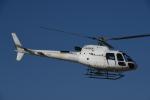 チャーリーマイクさんが、東京ヘリポートで撮影したアカギヘリコプター AS350B3 Ecureuilの航空フォト(飛行機 写真・画像)