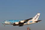 Tango Alphaさんが、成田国際空港で撮影した全日空 A380-841の航空フォト(飛行機 写真・画像)
