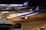 リンリンさんが、羽田空港で撮影した全日空 A321-211の航空フォト(飛行機 写真・画像)