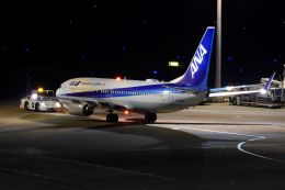 リンリンさんが、羽田空港で撮影した全日空 737-881の航空フォト(飛行機 写真・画像)