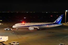 リンリンさんが、羽田空港で撮影した全日空 787-8 Dreamlinerの航空フォト(飛行機 写真・画像)