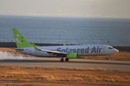 さかいさんが、神戸空港で撮影したソラシド エア 737-86Nの航空フォト(飛行機 写真・画像)