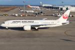 Den-Tさんが、中部国際空港で撮影した日本航空 787-8 Dreamlinerの航空フォト(飛行機 写真・画像)