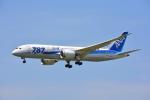 SKY☆101さんが、福岡空港で撮影した全日空 787-8 Dreamlinerの航空フォト(飛行機 写真・画像)