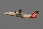 Koenig117さんが、シドニー国際空港で撮影したサンステート・エアラインズ DHC-8-315Q Dash 8の航空フォト(飛行機 写真・画像)
