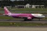 SIさんが、成田国際空港で撮影したピーチ A320-214の航空フォト(飛行機 写真・画像)