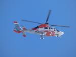 tetuさんが、札幌飛行場で撮影した北海道防災航空隊 AS365N3 Dauphin 2の航空フォト(飛行機 写真・画像)